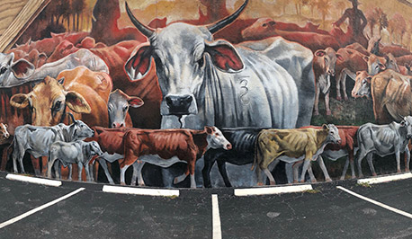 Mural of cattle
